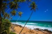Sri Lanka_S_-1411