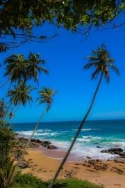 Sri Lanka_S_-1416