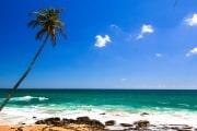 Sri Lanka_S_-1417