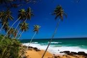 Sri Lanka_S_-1423