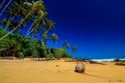 Sri Lanka_S_-1428