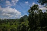Sri Lanka_S_-1008