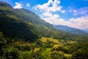 Sri Lanka_S_-1031