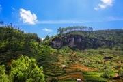 Sri Lanka_S_-1037