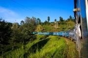 Sri Lanka_S_-1077