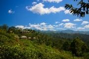 Sri Lanka_S_-1090
