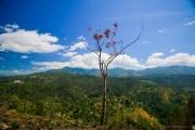 Sri Lanka_S_-1095