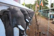 Sri Lanka_S_-112