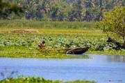 Sri Lanka_S_-1370
