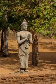 Sri Lanka_S_-186