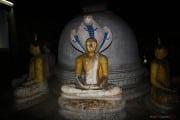 Sri Lanka_S_-465