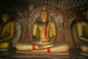 Sri Lanka_S_-467