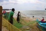 Sri Lanka_S_-5
