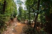 Sri Lanka_S_-562