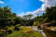Sri Lanka_S_-585