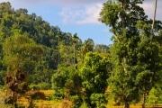 Sri Lanka_S_-631