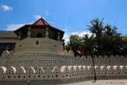 Sri Lanka_S_-664