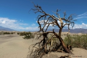 Californie_death valley_3
