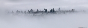 Brume au val de ruz140119