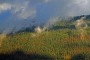 Montagne de Cernier_131109