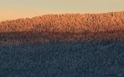 Montagne de Cernier_140119