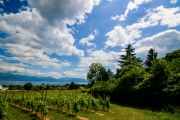 Morges_150620-13