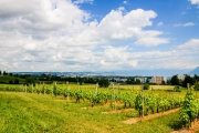 Morges_150620-14