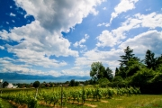 Morges_150620-17